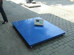 小型便携式5吨电子地上衡