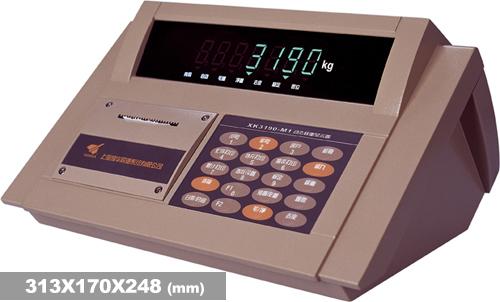XK3190-DM1称重仪表